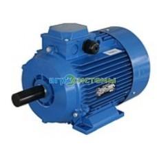 Электродвигатель 4,0кВт/1000 мин. 1-АИР112МВ6Y2